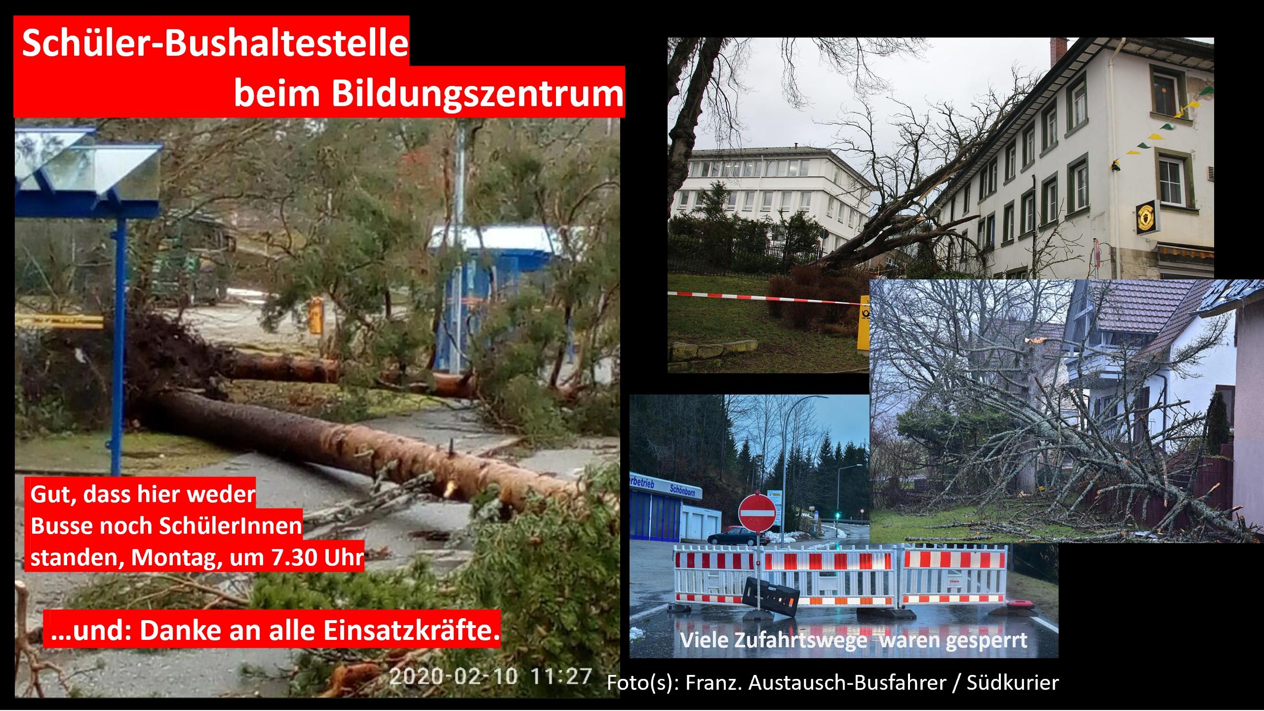 https://tsg-stgeorgen.de/img/Sturmtief-Sabine.jpg